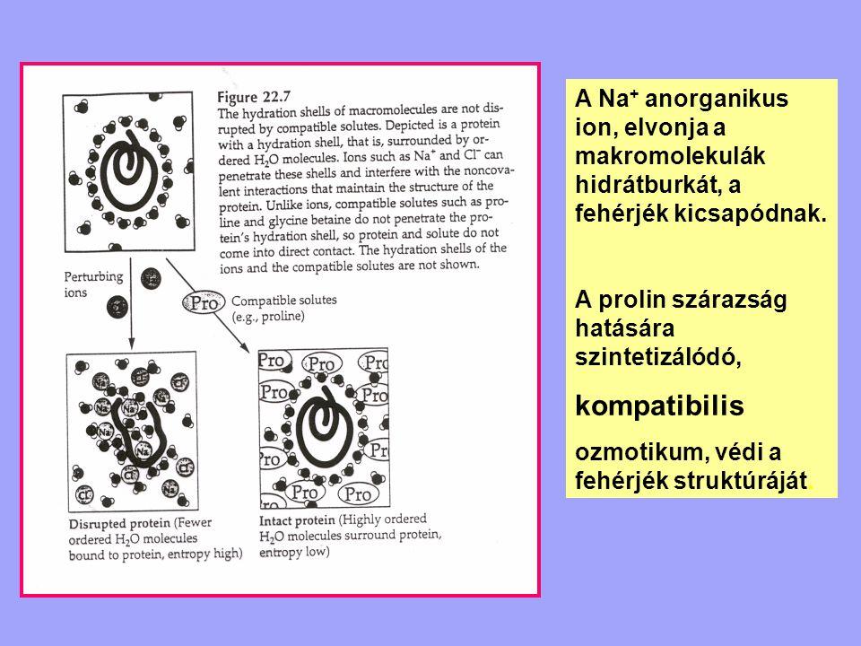 A Na+ anorganikus ion, elvonja a makromolekulák hidrátburkát, a fehérjék kicsapódnak.
