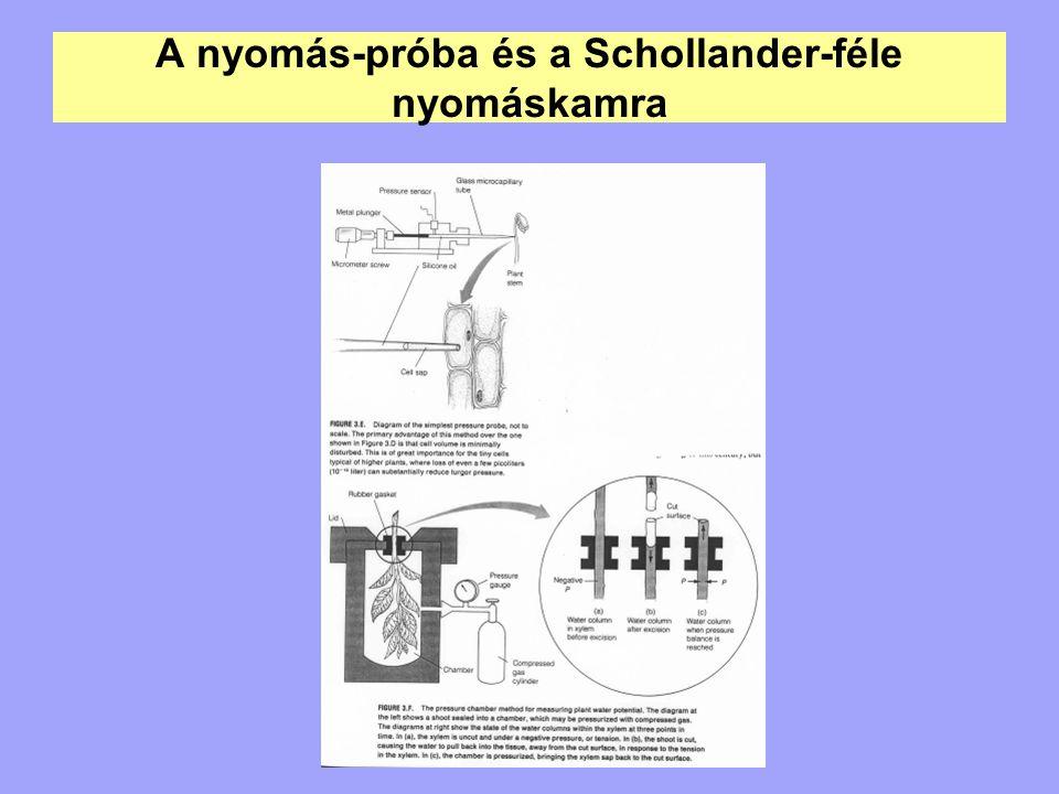 A nyomás-próba és a Schollander-féle nyomáskamra