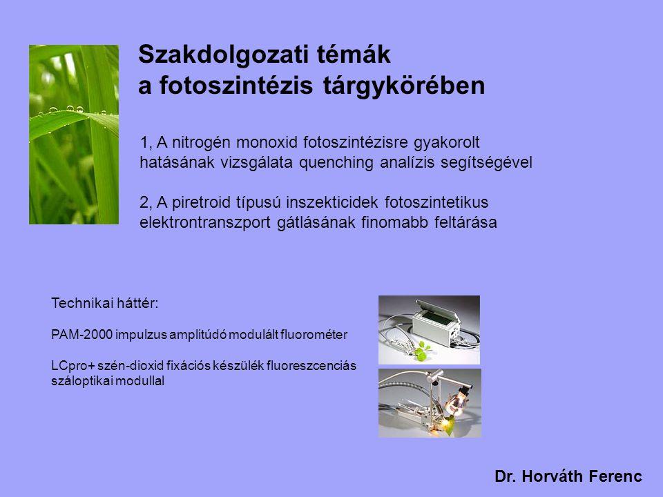 Szakdolgozati témák a fotoszintézis tárgykörében