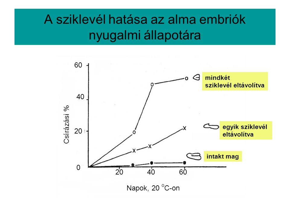 A sziklevél hatása az alma embriók nyugalmi állapotára