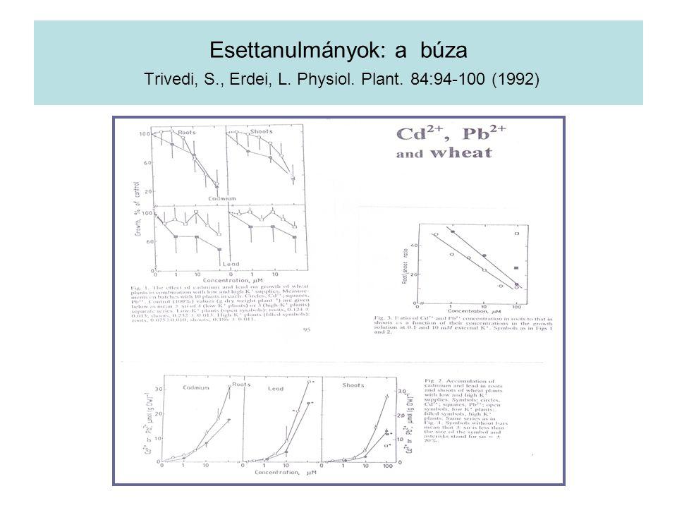 Esettanulmányok: a búza Trivedi, S. , Erdei, L. Physiol. Plant