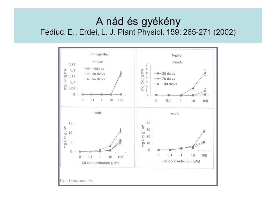 A nád és gyékény Fediuc. E. , Erdei, L. J. Plant Physiol