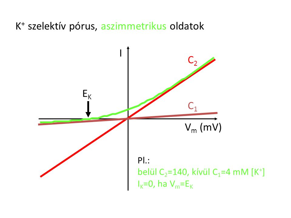 K+ szelektív pórus, aszimmetrikus oldatok