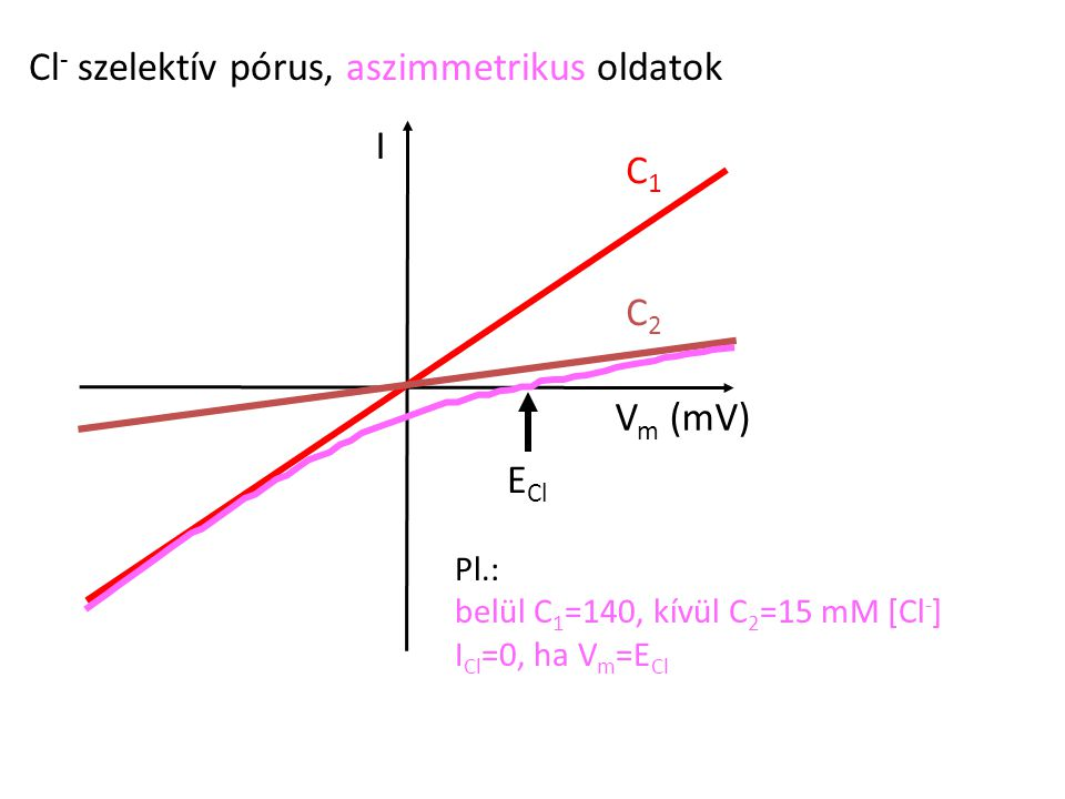 Cl- szelektív pórus, aszimmetrikus oldatok