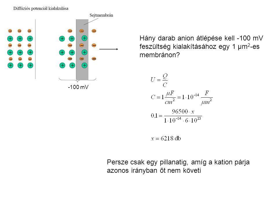 Hány darab anion átlépése kell -100 mV feszültség kialakításához egy 1 μm2-es membránon