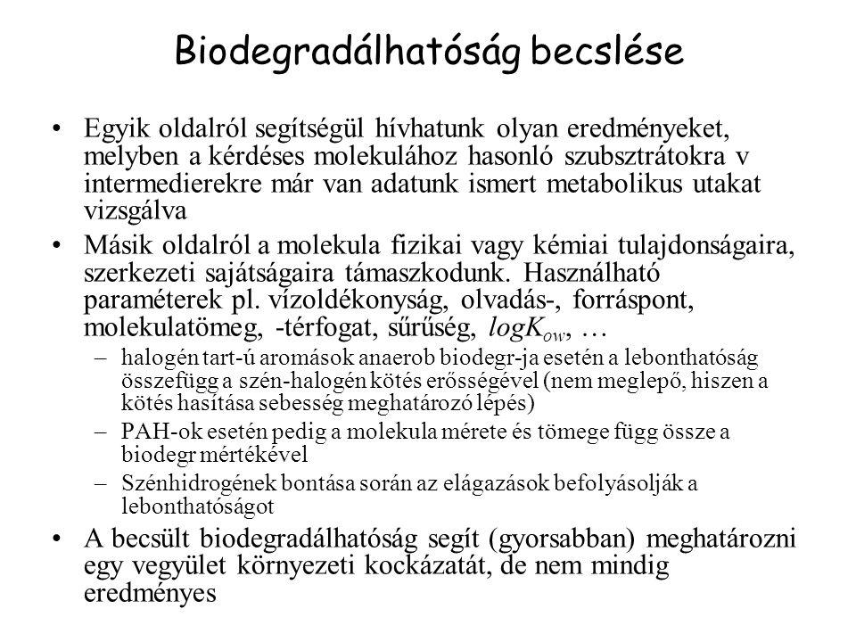 Biodegradálhatóság becslése