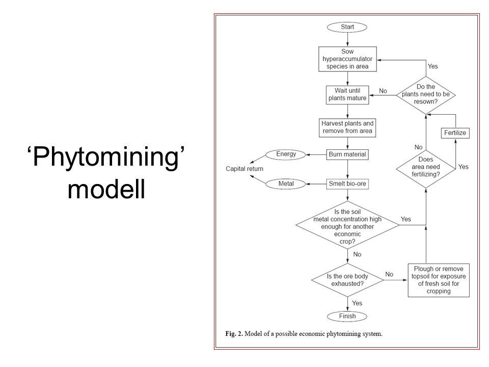 'Phytomining' modell