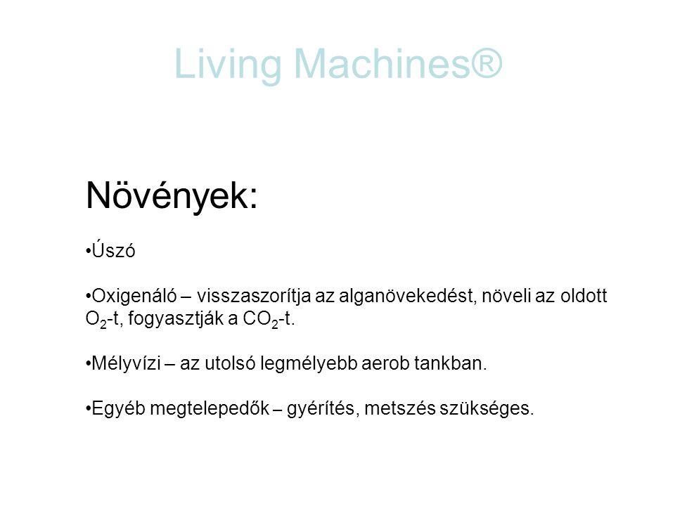 Living Machines® Növények: Úszó