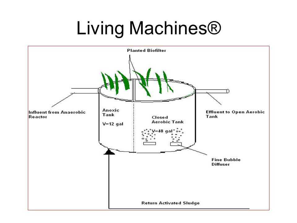 Living Machines®