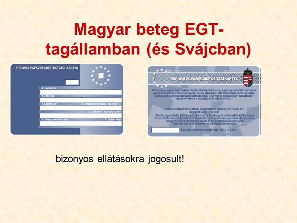 Magyar beteg EGT-tagállamban (és Svájcban)