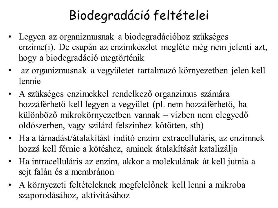 Biodegradáció feltételei