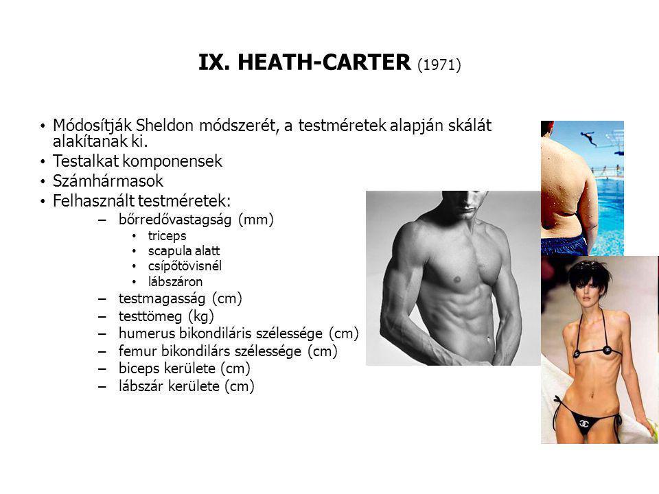 IX. HEATH-CARTER (1971) Módosítják Sheldon módszerét, a testméretek alapján skálát alakítanak ki. Testalkat komponensek.