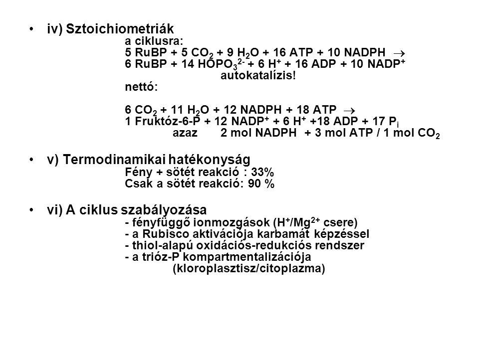 iv) Sztoichiometriák. a ciklusra: