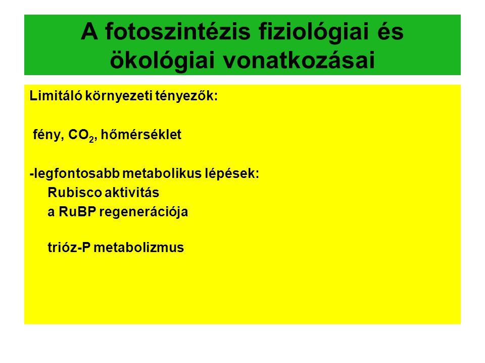 A fotoszintézis fiziológiai és ökológiai vonatkozásai