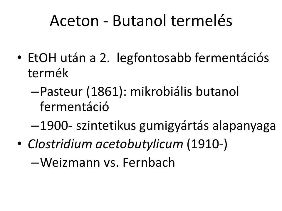 Aceton - Butanol termelés