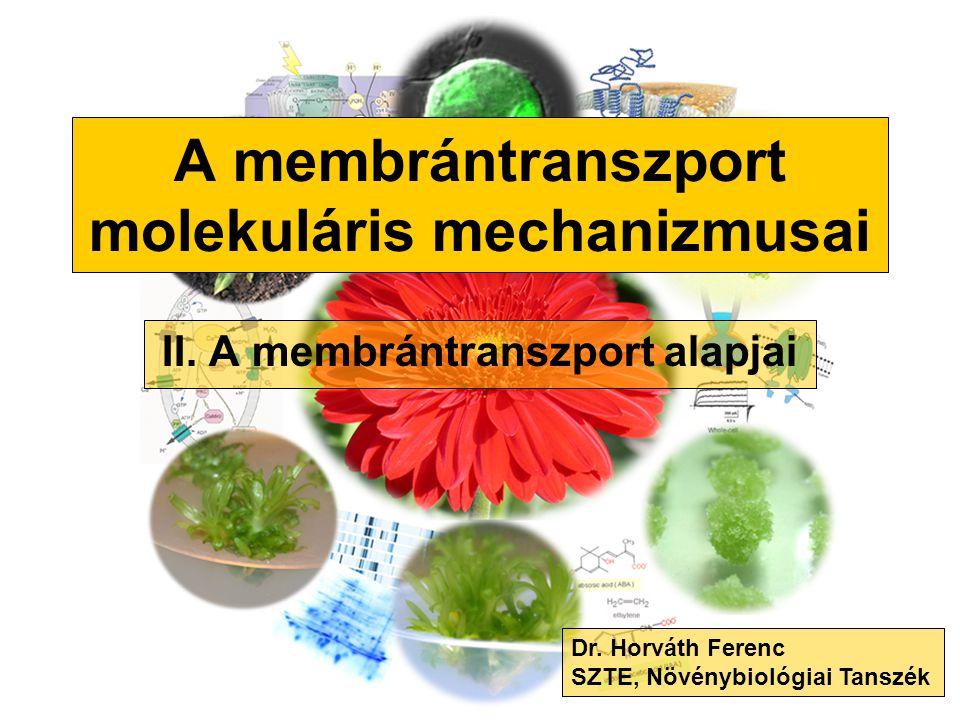 A membrántranszport molekuláris mechanizmusai