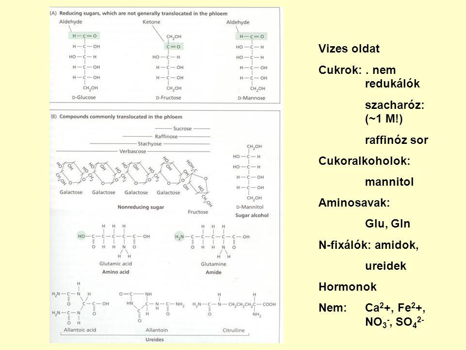 Vizes oldat Cukrok: . nem redukálók. szacharóz: (~1 M!) raffinóz sor. Cukoralkoholok: mannitol.