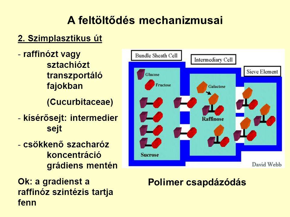 A feltöltődés mechanizmusai