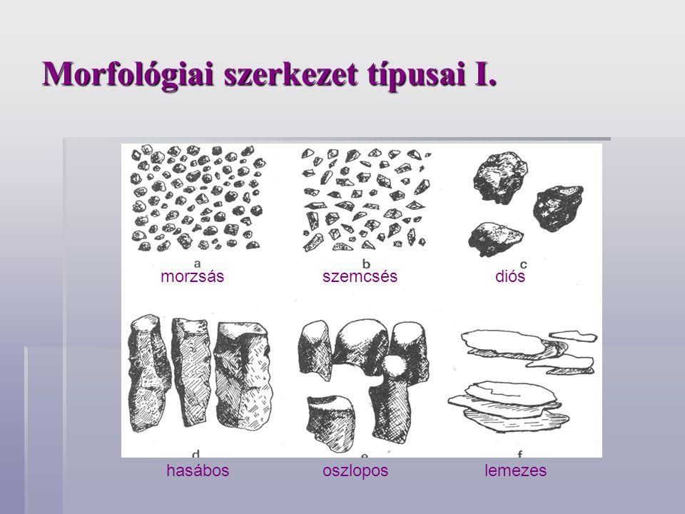 Morfológiai szerkezet típusai I.