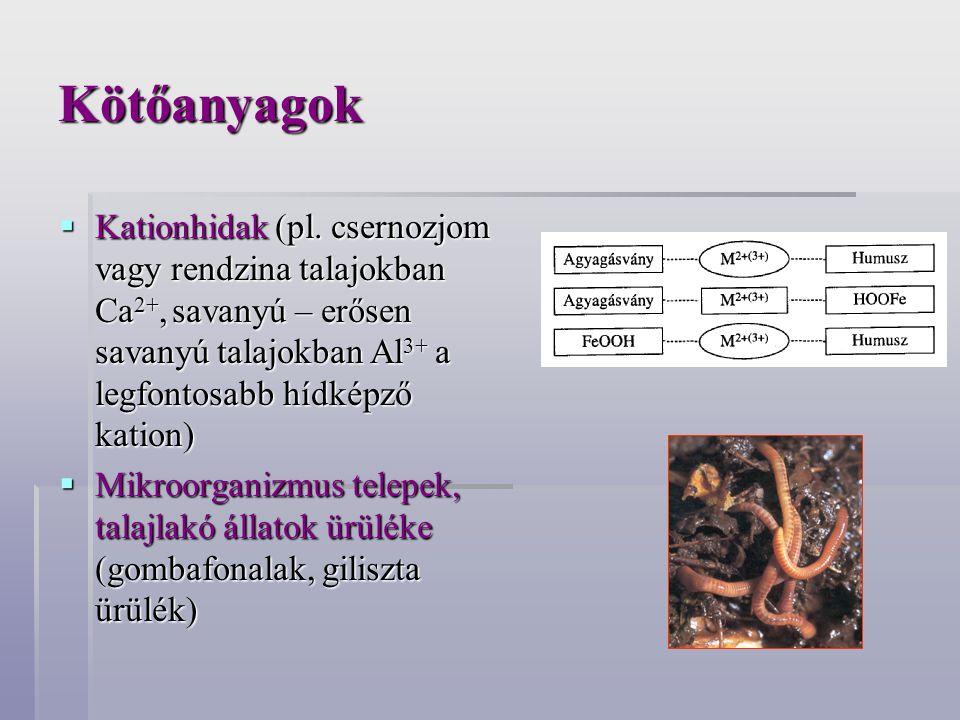 Kötőanyagok Kationhidak (pl. csernozjom vagy rendzina talajokban Ca2+, savanyú – erősen savanyú talajokban Al3+ a legfontosabb hídképző kation)