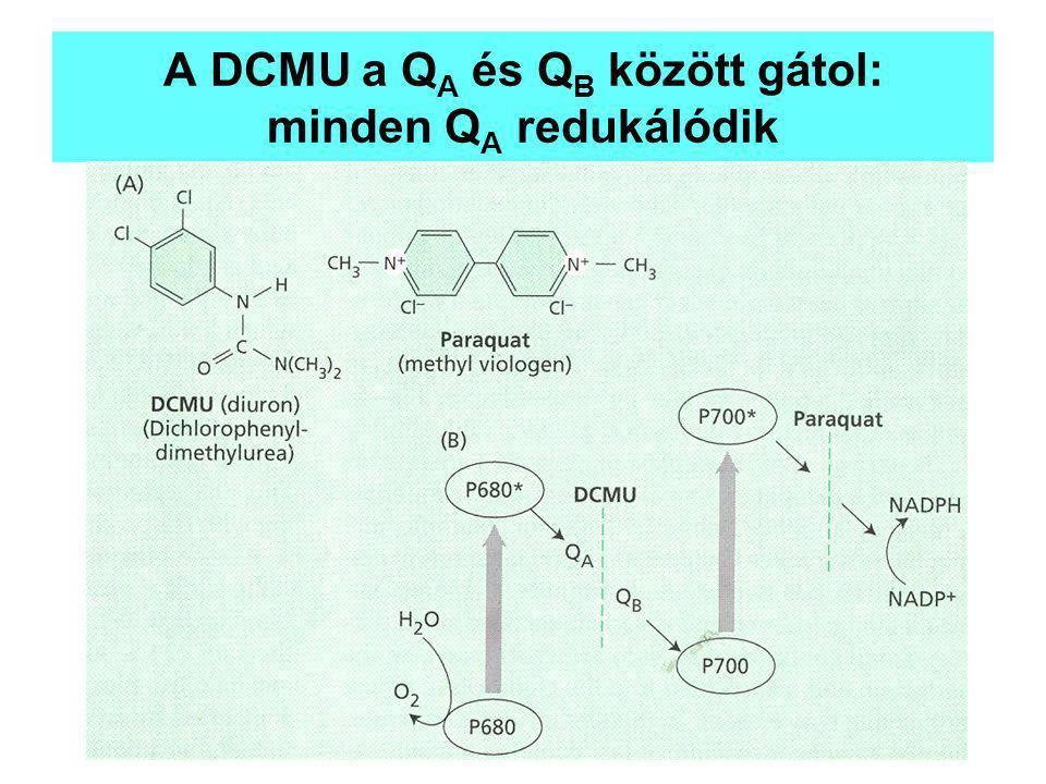 A DCMU a QA és QB között gátol: minden QA redukálódik