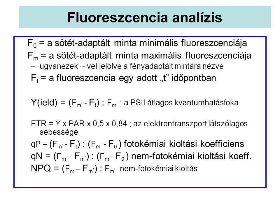 Fluoreszcencia analízis