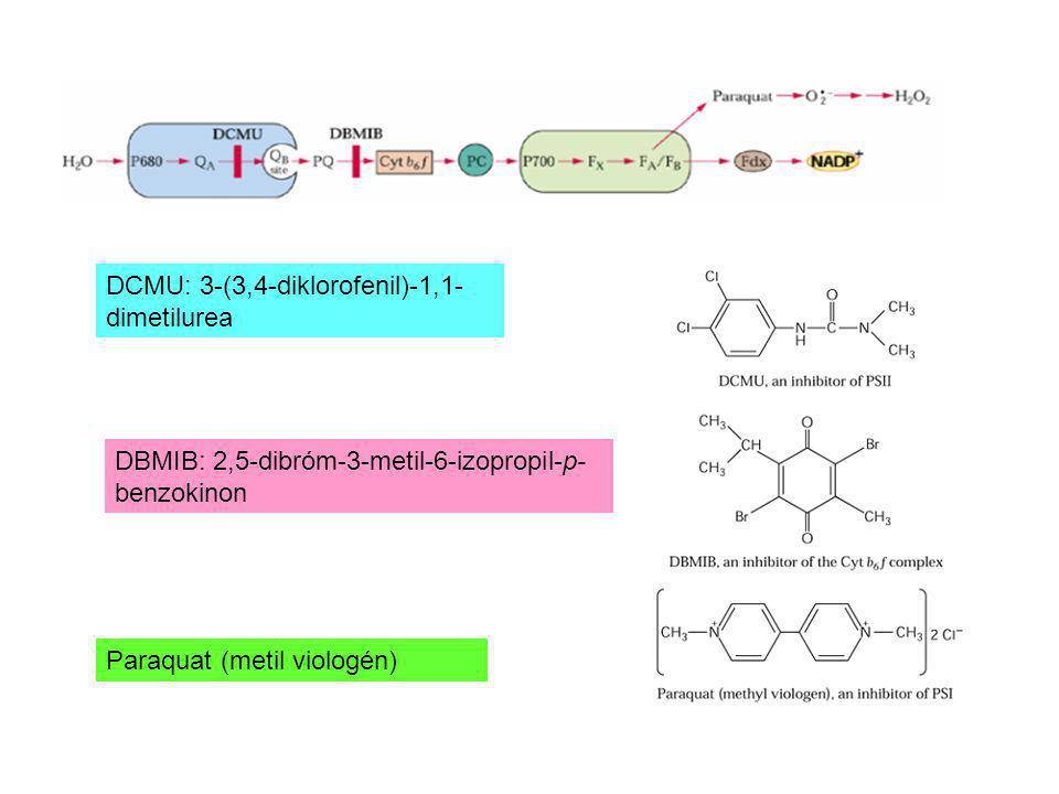 DCMU: 3-(3,4-diklorofenil)-1,1-dimetilurea