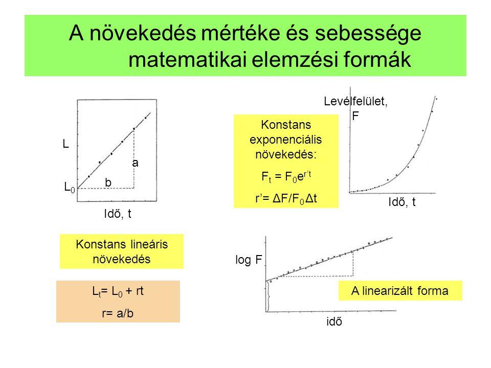 A növekedés mértéke és sebessége matematikai elemzési formák