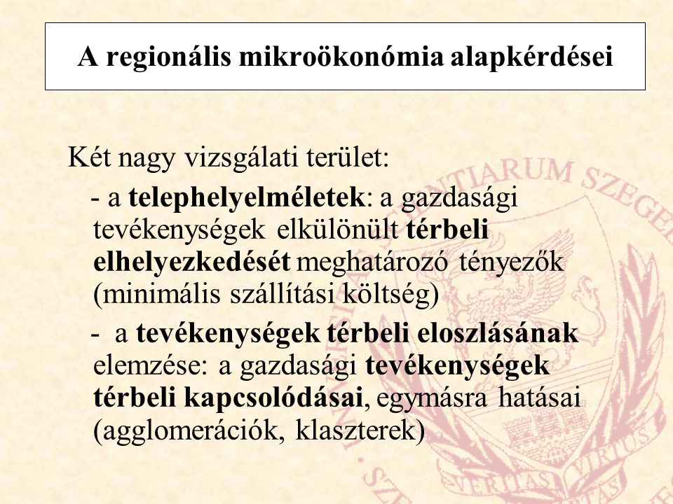 A regionális mikroökonómia alapkérdései