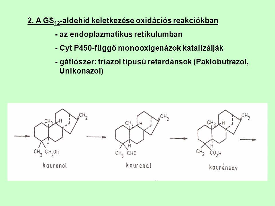 2. A GS12-aldehid keletkezése oxidációs reakciókban