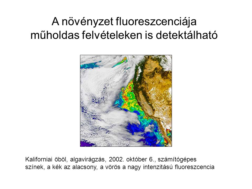 A növényzet fluoreszcenciája műholdas felvételeken is detektálható