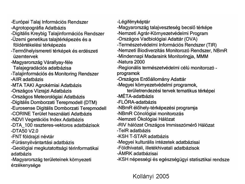Kollányi 2005