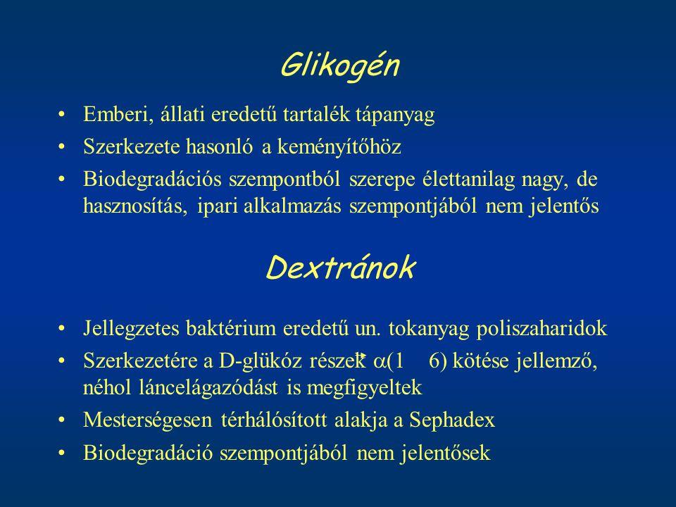 Glikogén Dextránok Emberi, állati eredetű tartalék tápanyag