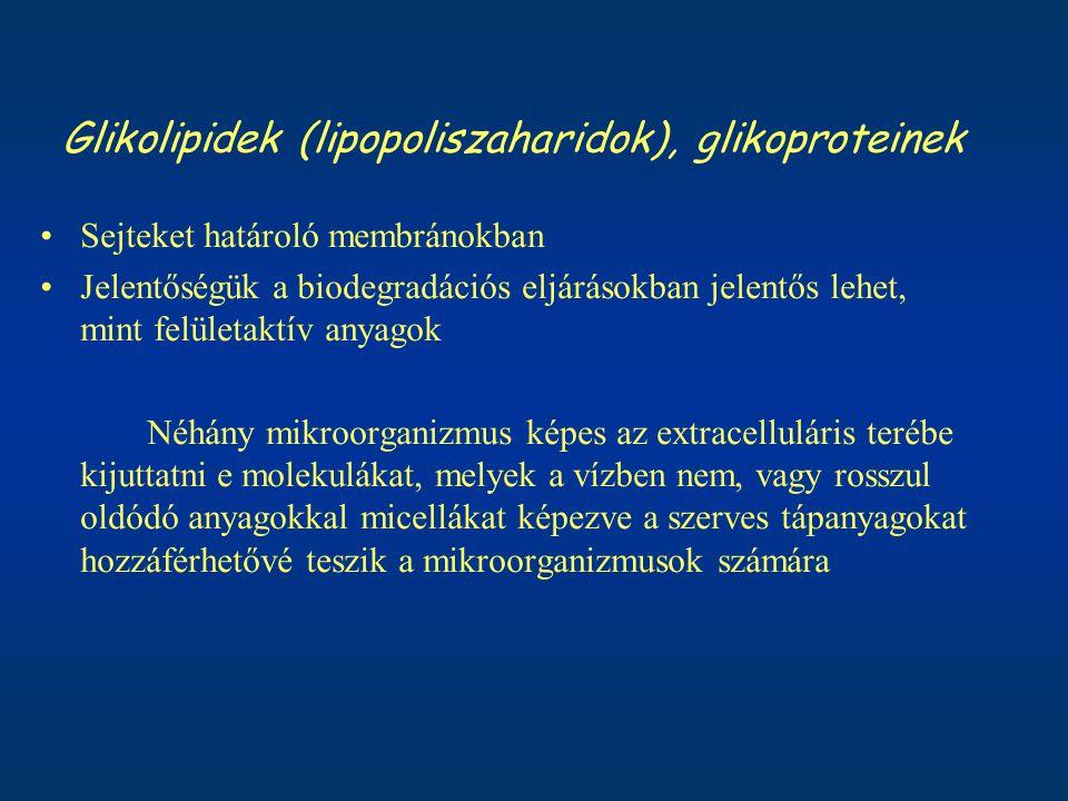 Glikolipidek (lipopoliszaharidok), glikoproteinek