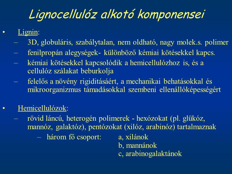 Lignocellulóz alkotó komponensei