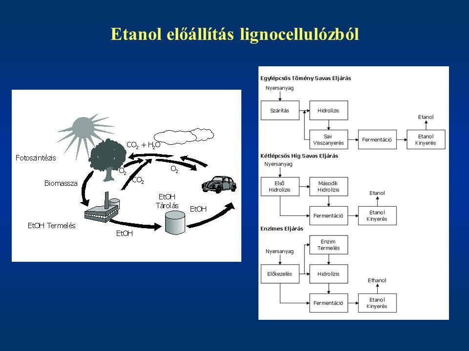 Etanol előállítás lignocellulózból