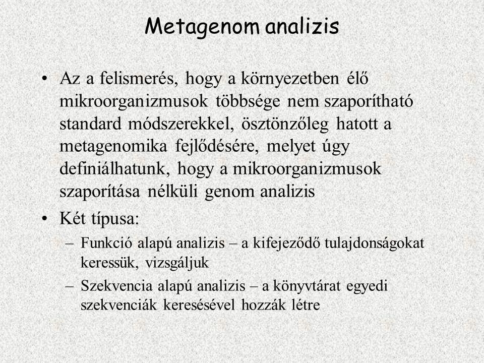 Metagenom analizis