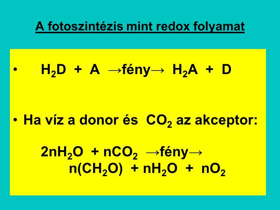 A fotoszintézis mint redox folyamat