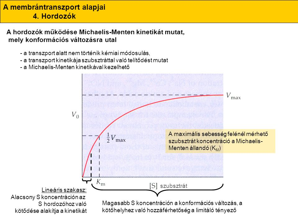 A membrántranszport alapjai 4. Hordozók