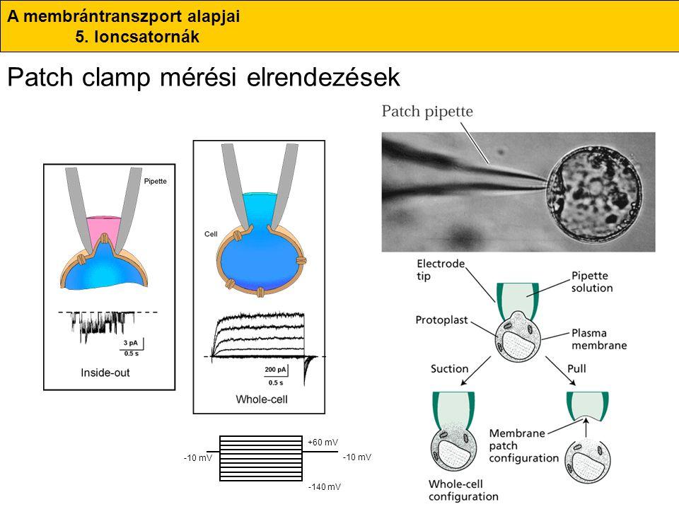 Patch clamp mérési elrendezések
