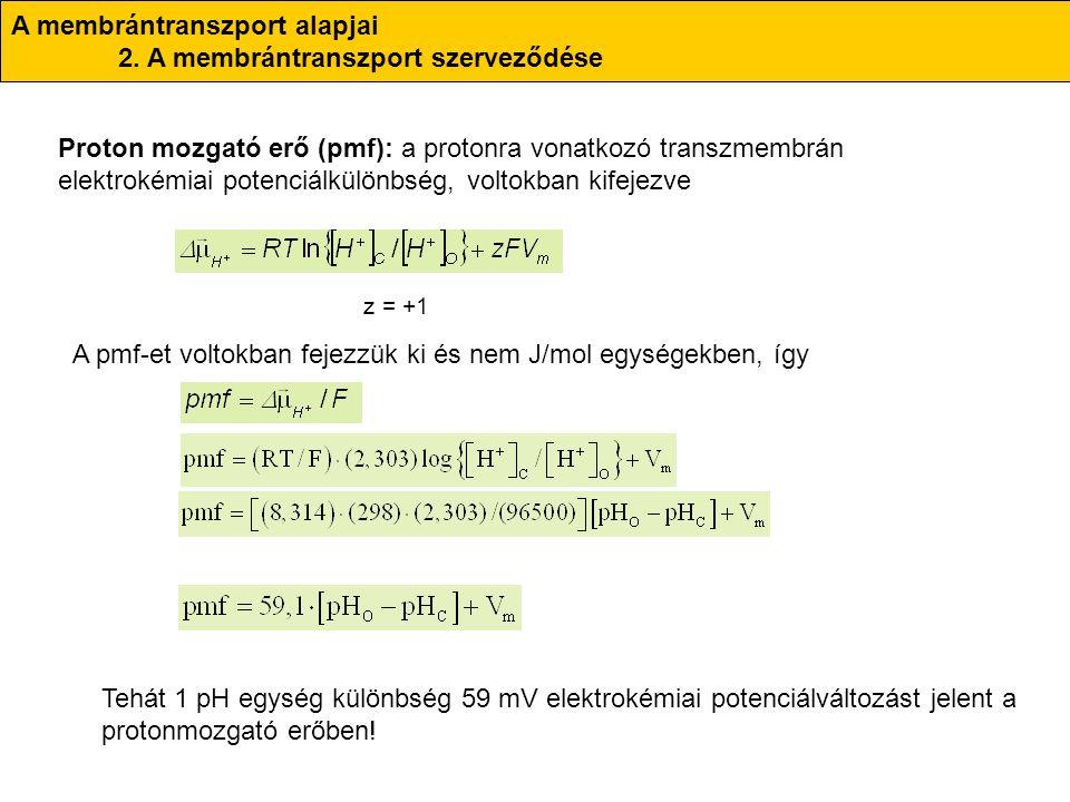 A membrántranszport alapjai 2. A membrántranszport szerveződése