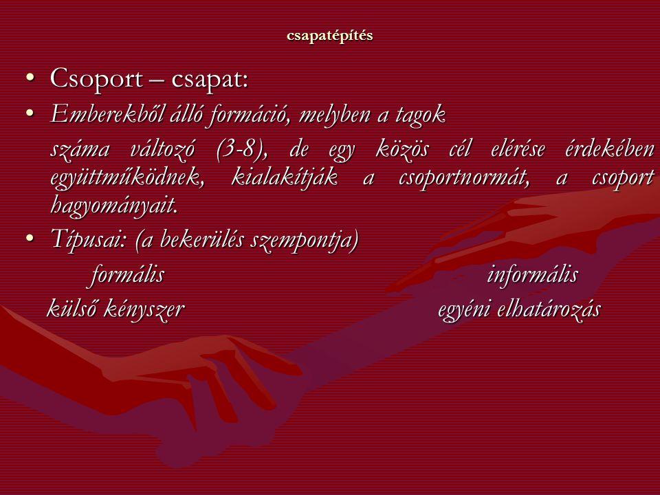 Csoport – csapat: Emberekből álló formáció, melyben a tagok