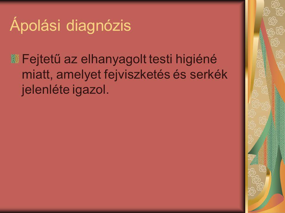 Ápolási diagnózis Fejtetű az elhanyagolt testi higiéné miatt, amelyet fejviszketés és serkék jelenléte igazol.