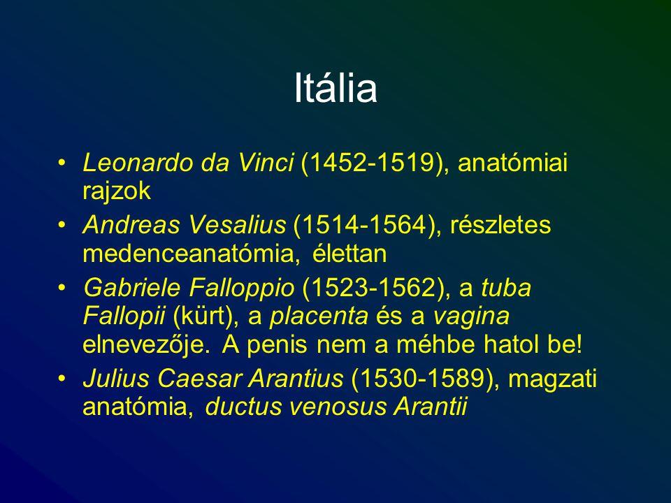 Itália Leonardo da Vinci (1452-1519), anatómiai rajzok