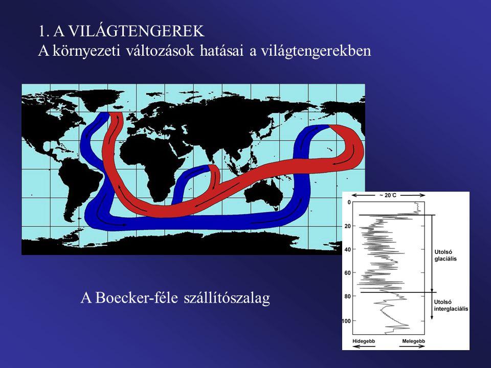 1. A VILÁGTENGEREK A környezeti változások hatásai a világtengerekben A Boecker-féle szállítószalag