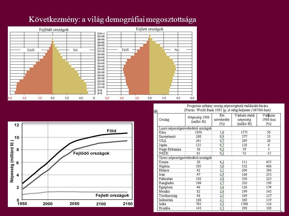 Következmény: a világ demográfiai megosztottsága