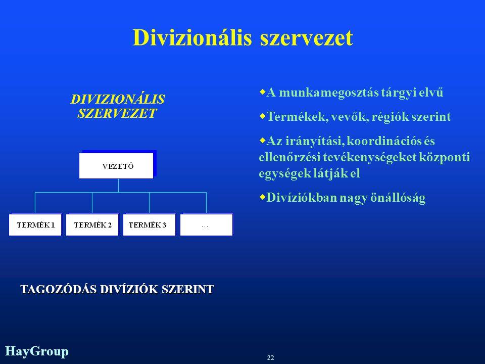 Divizionális szervezet
