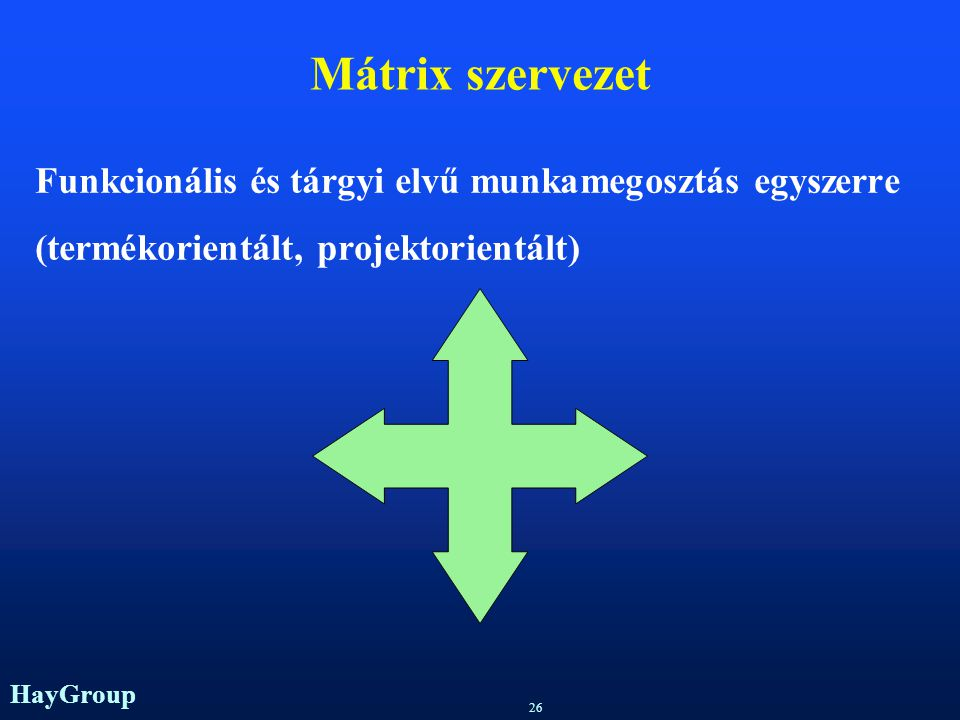 Mátrix szervezet Funkcionális és tárgyi elvű munkamegosztás egyszerre