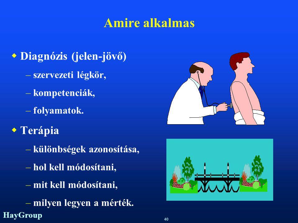 Amire alkalmas Diagnózis (jelen-jövő) Terápia szervezeti légkör,