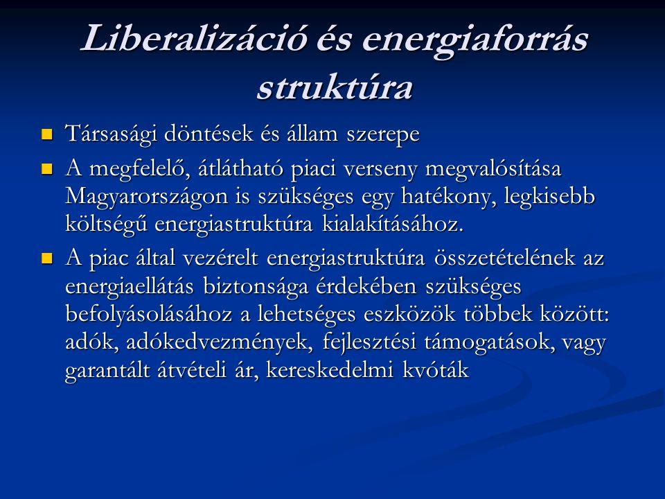 Liberalizáció és energiaforrás struktúra